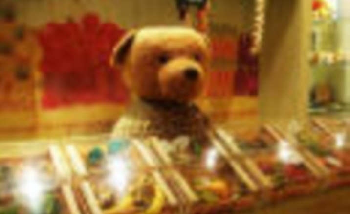 China Teddy Bear Museum Opened