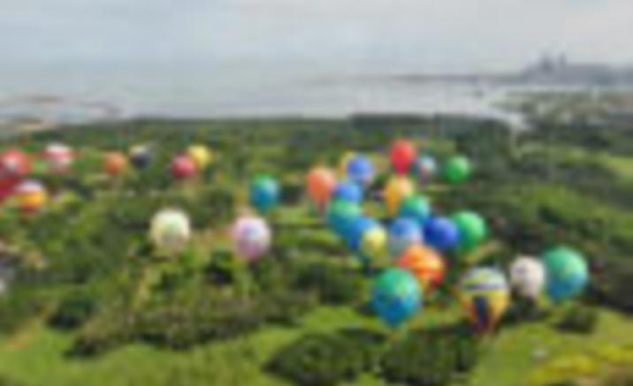 Hot-air Balloon Wedding