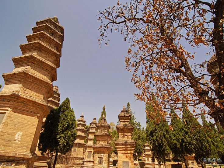 Luoyang & Shaolin Temple Tours