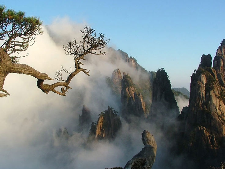 Huangshan Hiking Tour