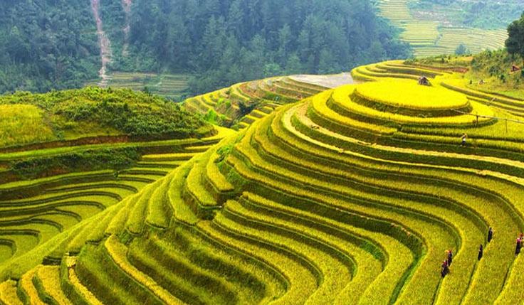 Kaili, Sanjiang & Longsheng Folk Custom Tour