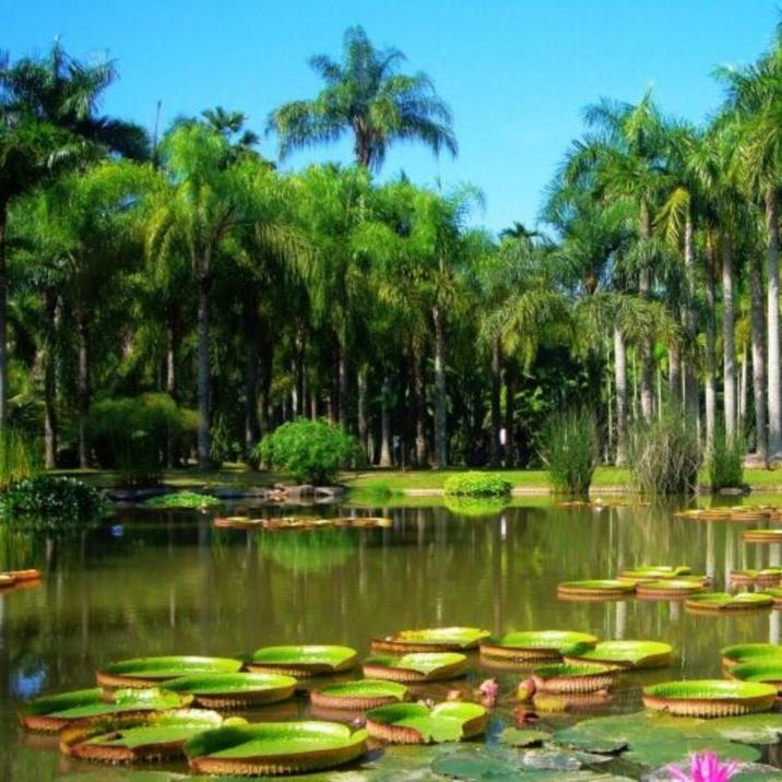 Menglun Tropical Botanical Garden