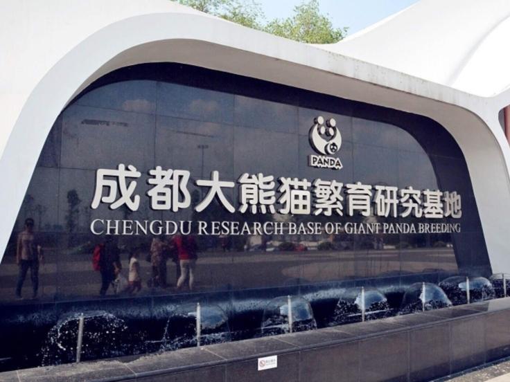 China Family Tours