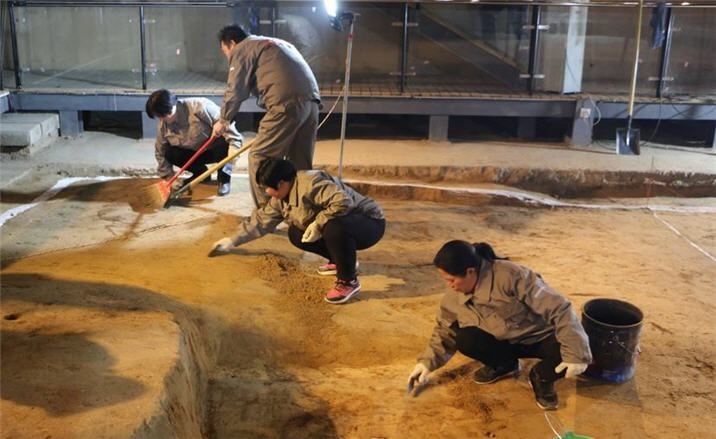 Chariot excavation open to public in Henan Province