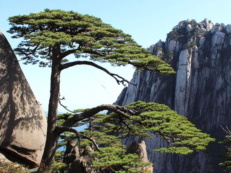 Pin de bienvenue - special aux Monts Huangshan