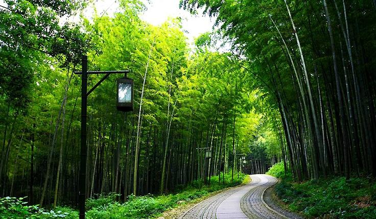 Hangzhou, loisir et plaisir