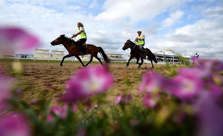 marche de cheval -- la grande fête d'été de Naadam