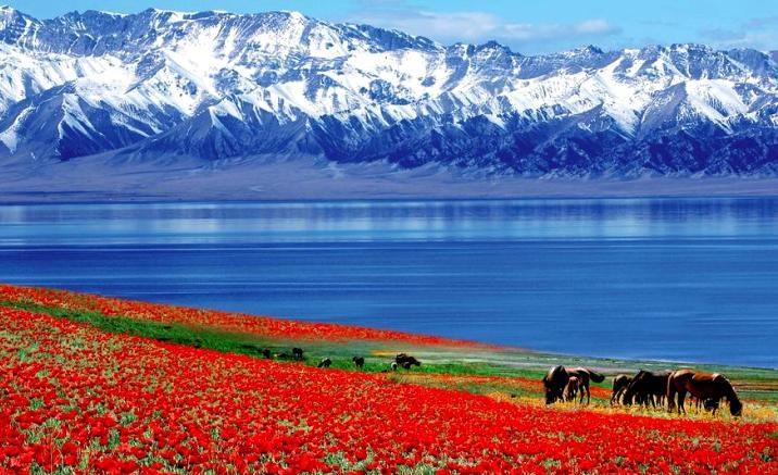 Xinjiang: trains de tourisme spéciaux