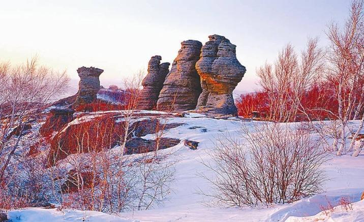 Forêt de granite d'Arshihaty en hiver