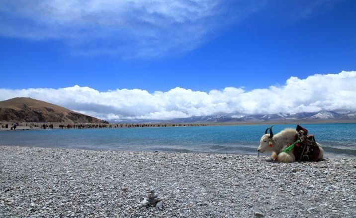 Three more airports to be built in Tibet
