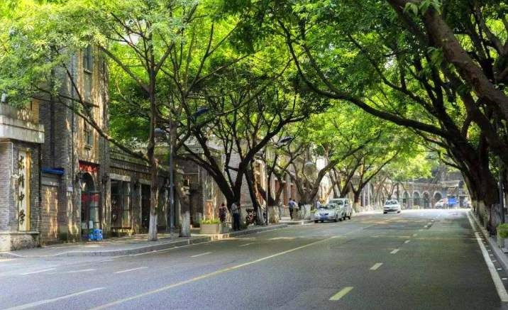 "Image exhibition ""Walk in Zhongshan 4th Road"" opens in Chongqing"