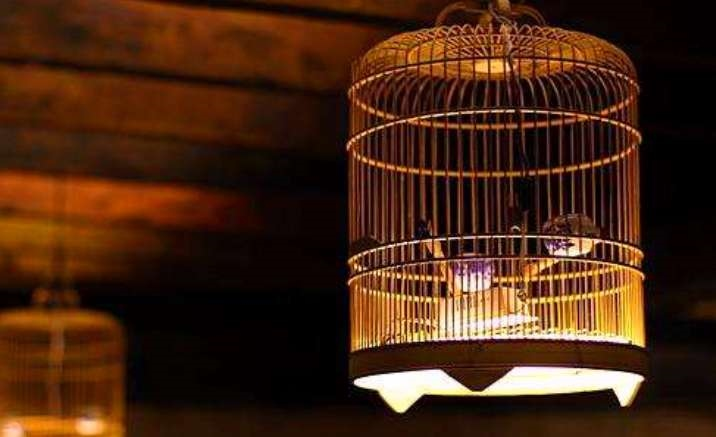 Birdcage Cultural Museum opens in Chengdu