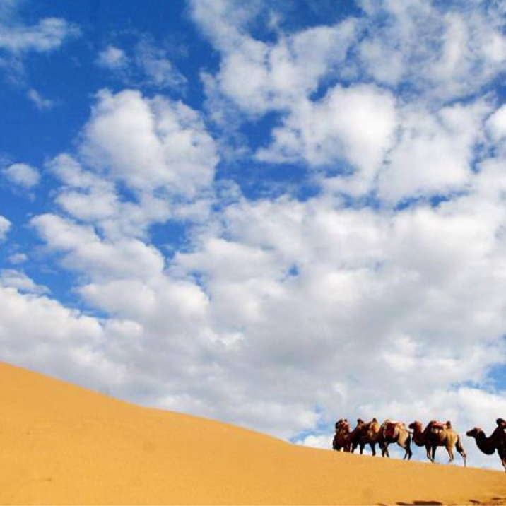 Kubuqi Desert