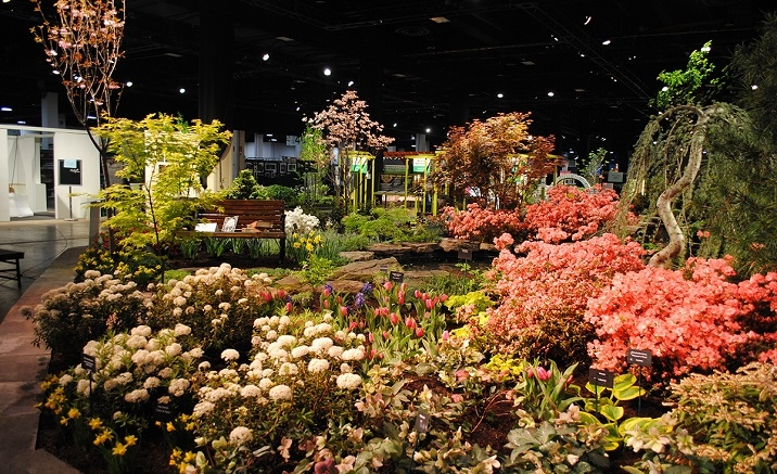 The 10th China Flower Expo to open soon in Shanghai