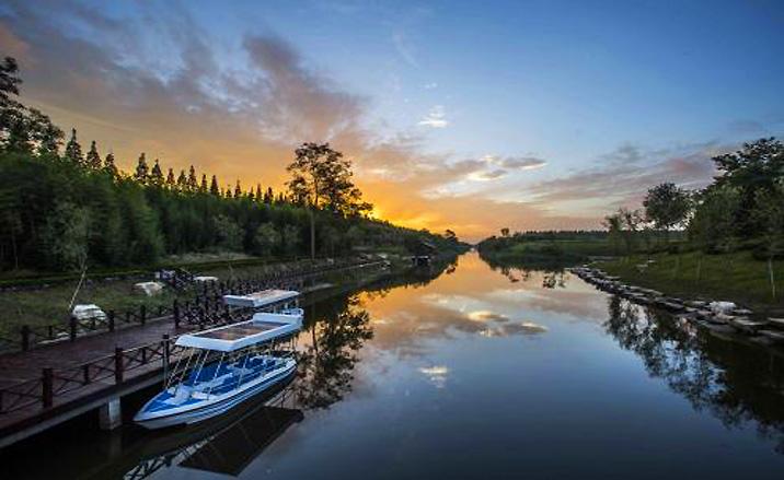 Parc forestier national de la mer Jaune, province du Jiangsu