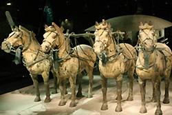 Grande Fouille du premier empereur Qin Shihuangdi