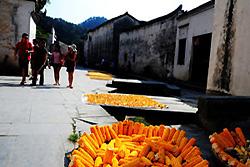 Village traditionnel de Hongcun