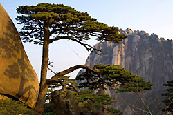 Monts Huangshan