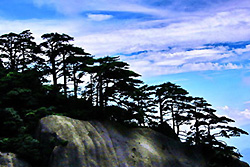 Monts Huangshan -2