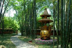 Parc Wangjianglou
