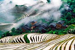 rizières en terrasse Longji au village Ping'an - Longsheng -1