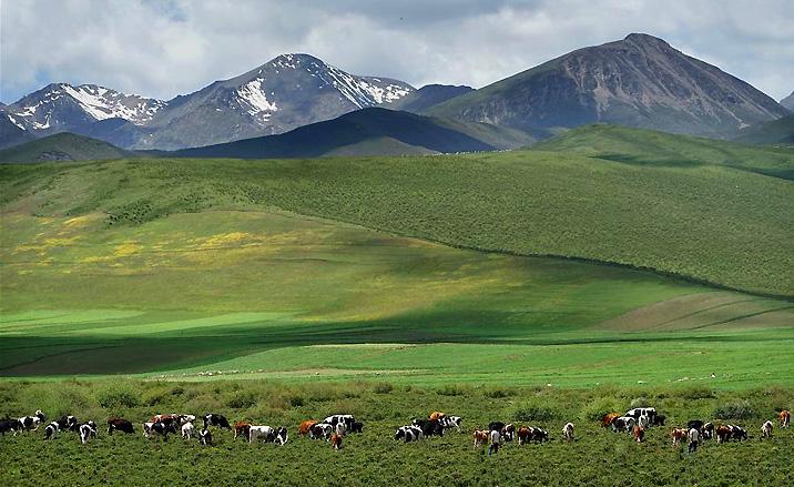 Randonnée à bicyclette : la route interprovinciale du Gansu au Qinghai -7